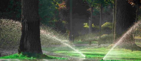 מערכת מים תקינה בחצר